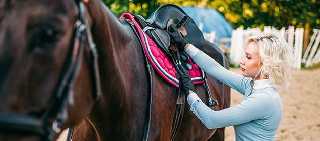 Das richtige Satteln eines Pferdes