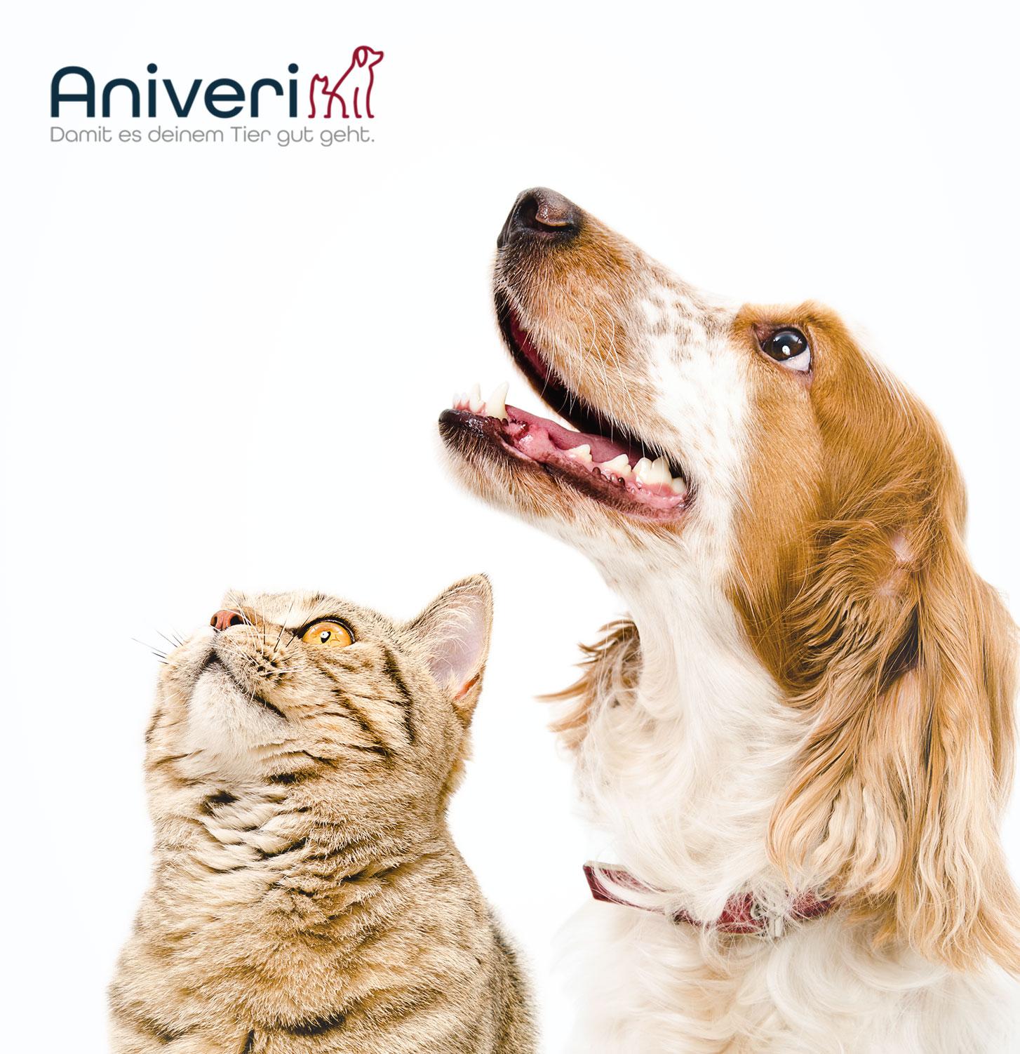 Neue Marke: Aniveri